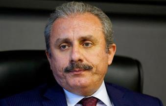 الحزب الحاكم بتركيا يستعد لتقديم مسودة دستور للبرلمان لتوسيع سلطات الرئيس