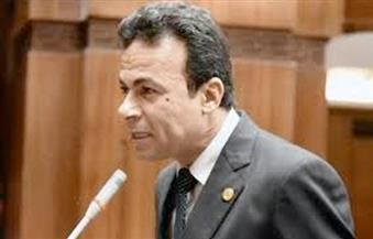 برلماني يطالب بإقالة وزراء المجموعة الاقتصادية