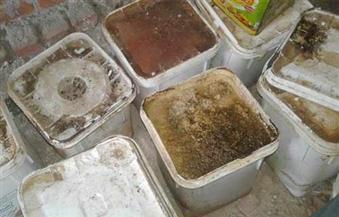 بالصور.. ضبط كميات فاسدة من المواد الغذائية بمركز ساحل سليم