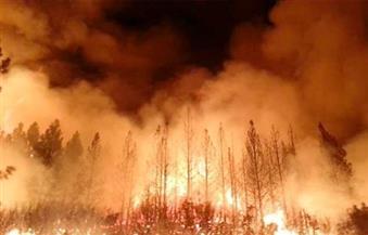ارتفاع عدد قتلى حريق غابات مدمر في تنيسي إلى 11 قتيلاً