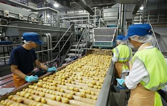 محمد شكري: السلع الغذائية لن ترتفع أسعارها في 2018.. وزيادة الرواتب ستحرك السوق