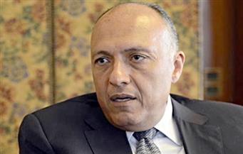 شكري يستعرض محددات وأهداف سياسة مصر الخارجية مع 4 رؤساء لجان بمجلس النواب
