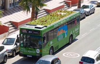 زراعة حدائق فوق أسطح الحافلات.. أحدث أسلحة أسبانيا لتحسين البيئة
