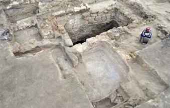 بالصور.. بعثة أثرية بولندية تكتشف مقبرة لحيوانات محنطة جنوب البحر الأحمر
