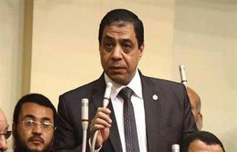 """حسني حافظ: """"الوفد"""" هو العمود الرئيسي للسياسة المصرية على مر الزمان"""