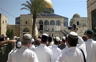 استطلاع: الإسرائيليون قلقون من الاقتتال الداخلي أكثر من الصراع مع العرب