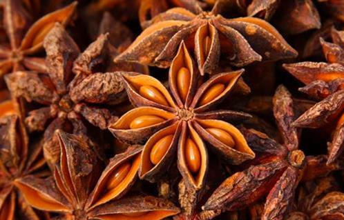 اليانسون النجمي الصيني فعال لعلاج الروماتيزم والمساعدة على الهضم بوابة الأهرام