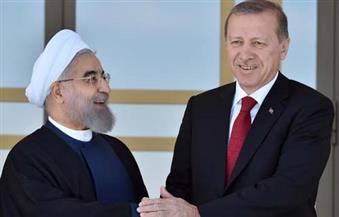 الرئاسة التركية: أردوغان وروحاني يبحثان هاتفيا التطورات في سوريا