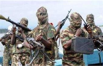 بوكو حرام تستهدف تشاد من جديد