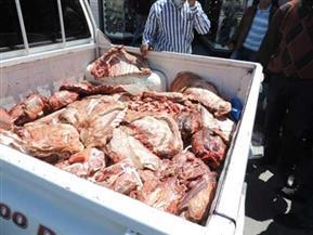ضبط كميات كبيرة من اللحوم والسلع الغذائية الفاسدة بشبرا الخيمة
