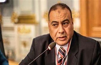 برلماني يشيد بمبادرة محافظ أسوان  فيديو