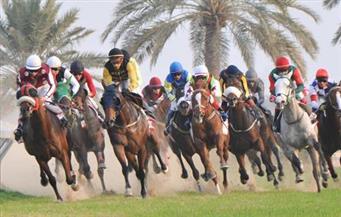 """مهرجان """"ماطا"""".. سباق الفروسية لقبائل شمال المغرب  فيديو"""