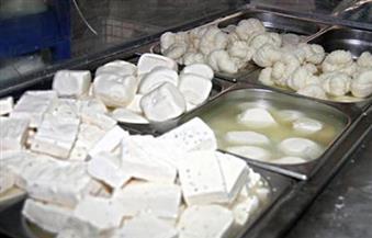 ضبط 78 طن منتجات ألبان فاسدة بالقليوبية