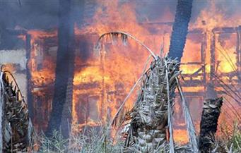 نفوق 21 رأس ماشية في حريق مزرعة بالفيوم