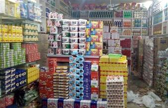 تحرير 46 محضر مخالفات تسعيرة وسلع مغشوشة وفاسدة بمراكز الغربية