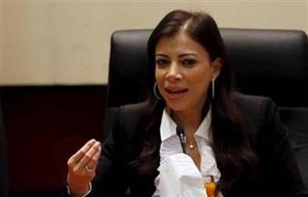 رئيس الهيئة العامة للاستثمار يستقبل مدير الاستثمار بمحافظة جنوب سيناء
