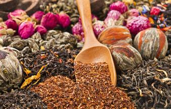 أهمها-الحرجل-وبلح-السكر-الأعشاب-الطبيعية-علاج-رباني-يسكن-وديان-البحر-الأحمر-