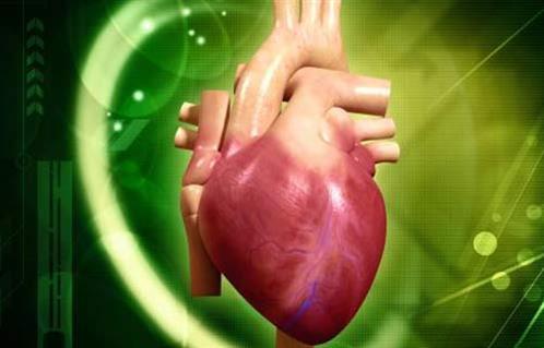 خبراء القلب: تغيير الصمام الأورطي بالقسطرة ثورة علمية أنقذت حياة ٥٠% من المرضي 2016-635980633225260788-526_main