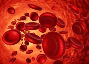 أحمـد البري يكتب: فقر الدم خطر يهدد أطفال مصر