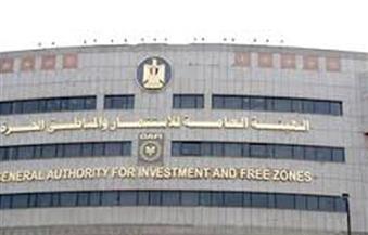 الاستثمار تستعين بخبرات البنك الدولي في مجال تقديم  الاستشارات الفنية