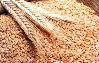 اللجنة البرلمانية لتقصي الحقائق حول فساد عمليات توريد القمح تزور صومعة أرما بطريق إسكندرية الصحراوي