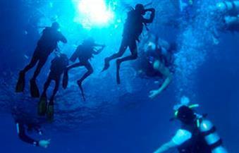"""""""السياحة"""" تخفض رسوم ترخيص مراكز الغوص والأنشطة البرية 50% لمدة عام"""
