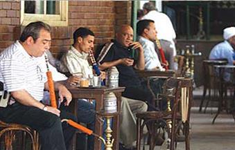 تيمور: الأرباح الخيالية وراء انتشار المقاهي في شوارع القاهرة.. وتغليظ العقوبات الحل