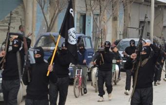 """سي.آي.إيه: الطريق مازال طويلاً قبل تحقيق تقدم """"مهم"""" ضد داعش"""