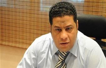 عبد اللاه: على الدولة والبنوك دعم الشركات المصرية بالعراق للحصول على حصة من المشروعات