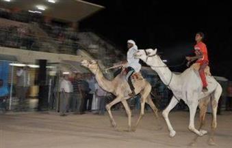 فنون شعبية وموسيقى عربية وقصائد شعرية فى احتفالات الوادي الجديد بثورة 30 يونيو