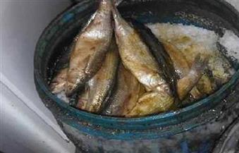 إعدام كميات من الرنجة والأسماك والمشروبات الفاسدة في حملات للصحة بالفيوم