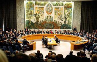 مصدر دبلوماسي: مصر ليس لديها اعتراض على البيان المطروح أمام مجلس الأمن حول أحداث تركيا