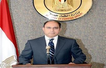 الخارجية: سفاراتنا بالخارج لعبت دورًا كبيرًا في كشف جرائم الإخوان
