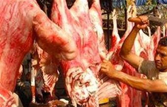 حملة بيطرية للتفتيش على محلات الجزارة والدواجن فى الزيتون