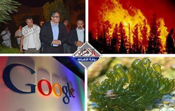 أول نشرة أخبار للآثار.. احذر أن تسأل جوجل.. حرائق كاليفورنيا.. طوارئ بأمريكا بنشرة السادسة