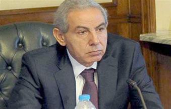 وزير الصناعة: الانتهاء من 90% من المرحلة الأولى لـ مدينة الروبيكى للجلود