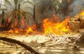 بعد حريق الراشدة بالوادي الجديد.. 1000 جنيه لكل متضرر وجهاز أدوات منزلية للمنازل