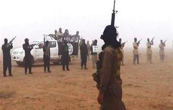 حلف الناتو يؤكد استيلاء داعش على تجهيزات عسكرية أمريكية في أفغانستان