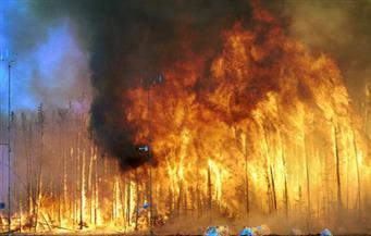 مقتل 7 أشخاص في حريق غابات بولاية تينيسي الأمريكية