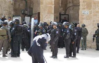 مصر تدين اقتحام المسجد الأقصى واستمرار النشاط الاستيطاني.. وتطالب إسرائيل بالتوقف عن الخطوات الأحادية