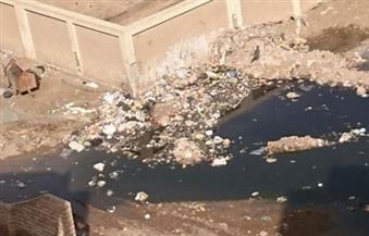 أهالٍ بقرية جعفر الصادق بأسوان يقطعون الطريق الزراعي بسبب طفح مياه الصرف الصحي