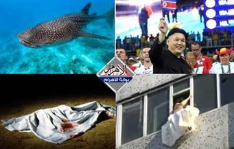 العروس الهاربة.. ظهور القرش.. عصابة الأعضاء البشرية.. ضجة زعيم كوريا الشمالية بنشرة الثالثة