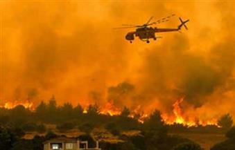 القنصلية العامة في لوس أنجلوس تطمئن على الجالية في أعقاب حرائق الغابات
