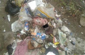 عمال النظافة بالمنصورة يعثرون على طفل حديث الولادة وسط القمامة بمنطقة جديلة