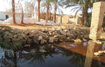 بالصور..محافظ أسوان : مشكلة فارس تكمن في مياه الصرف الزراعي وليس الجوفية