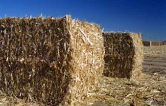 """""""البيئة"""" تواجه مخالفات المزارعين بتعزيز المعدات الخاصة بعمليات جمع وكبس المخلفات الزراعية"""