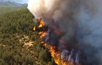 إجلاء نحو 700 شخص من منازلهم بسبب حرائق الغابات في كاليفورنيا