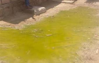 """بالصور.. مياه مجهولة المصدر تغرق شوارع وبعض منازل أهالي """"حنا حبيب"""" بالفيوم"""