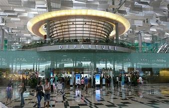 نفوق أكثر من 100 حيوان وطائر بسبب الحرارة المفرطة بمطار في تايوان
