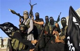 """العثور على مقبرة جماعية لمقاتلي """"داعش"""" في جزيرة الخالدية بالعراق"""